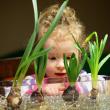 15 loài hoa chứa độc nhưng nhiều người lại quen trồng trong nhà