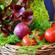 Chuyên gia dinh dưỡng Hàn Quốc: Có thể ngăn lão hóa hiệu quả bằng phương pháp ăn thực phẩm theo màu sắc